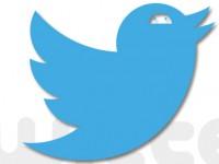 Twitter: Von 23 Millionen Bots und Video-Werbung