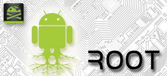root_new