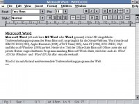 MS Word for Windows 1.1