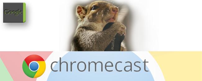 Chromecast Video mit Eichhörnchen