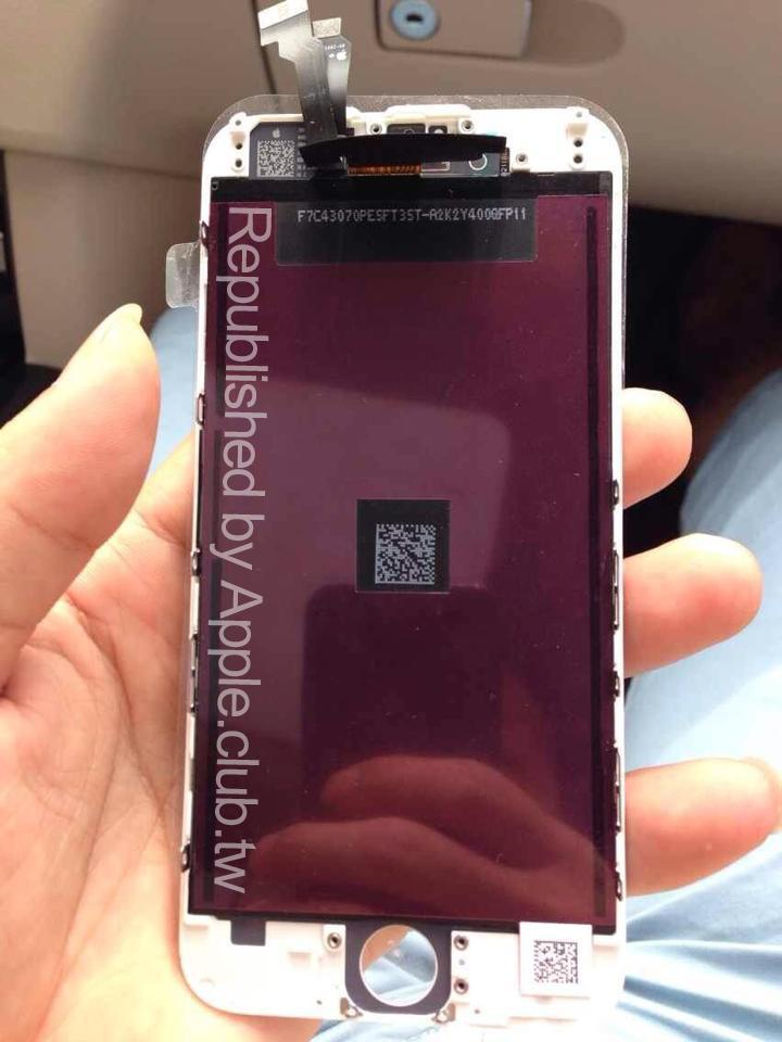 iPhone 6 Frontseite Leak