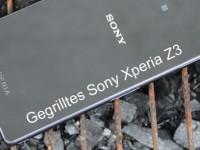 Sony Xperia Z3: Den Grill überlebt es auch