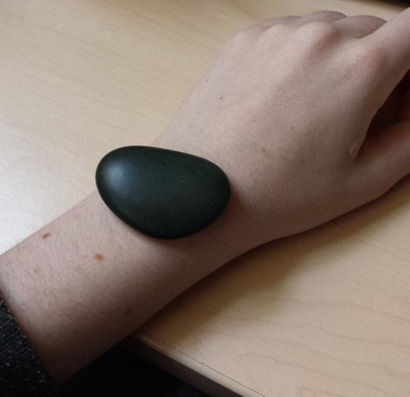 Pebble 2 Leak