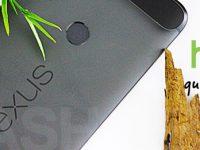 Das Google Nexus 2016 und der neue Homebutton