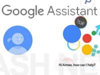 Hol dir den Google Assistant auf dein Android Smartphone