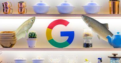 Google Salmon und Medaka