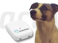 Tractive findet mit GPS auch dein Haustier wieder